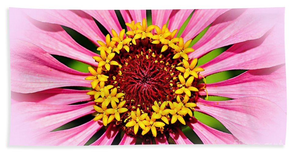 Photography Bath Sheet featuring the photograph Glowing Zinnia By Kaye Menner by Kaye Menner