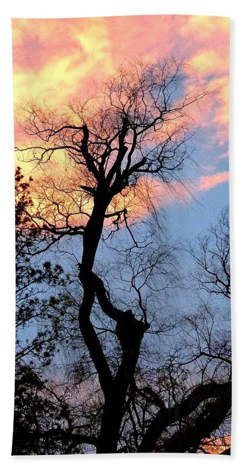 Gnarled Tree Silhouette Bath Sheet featuring the photograph Gnarled Tree Silhouette by Will Borden