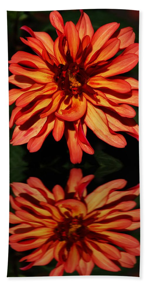 Flower Bath Sheet featuring the photograph Godess Reflected by Aimee L Maher ALM GALLERY