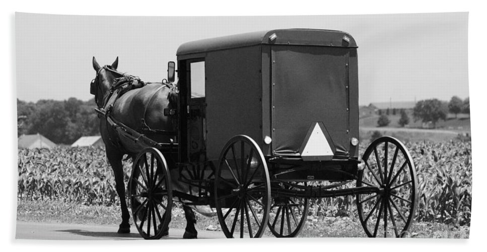 Amish Hand Towel featuring the photograph Going Buggy by Cindy Manero