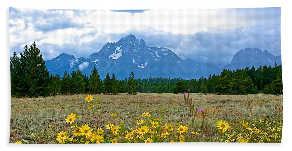 Golden Asters And Tetons From The Road In Grand Teton National Park Hand Towel featuring the photograph Golden Asters And Tetons From The Road In Grand Teton National Park-wyoming by Ruth Hager