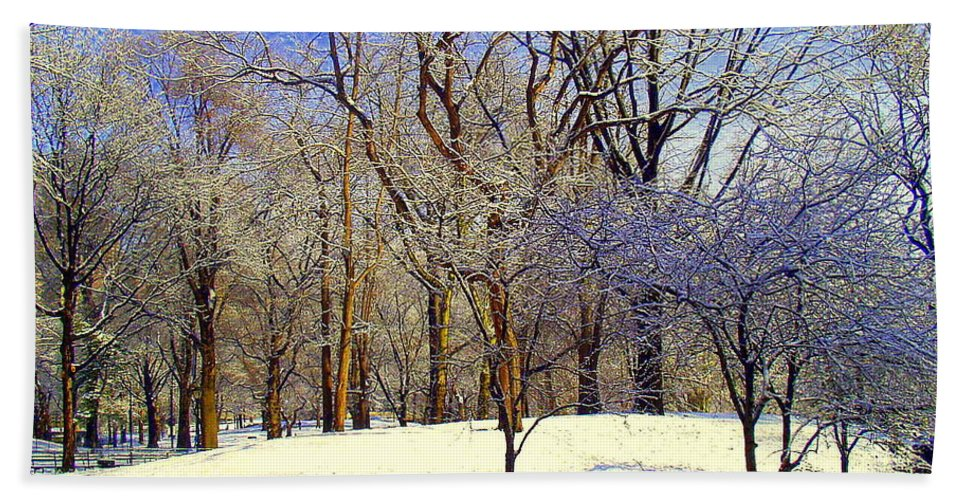 Snow Bath Sheet featuring the photograph Golden Central Park by Noa Yerushalmi