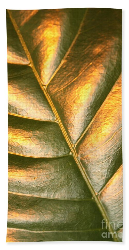 Gold Bath Sheet featuring the photograph Golden Leaf 2 by Carol Groenen