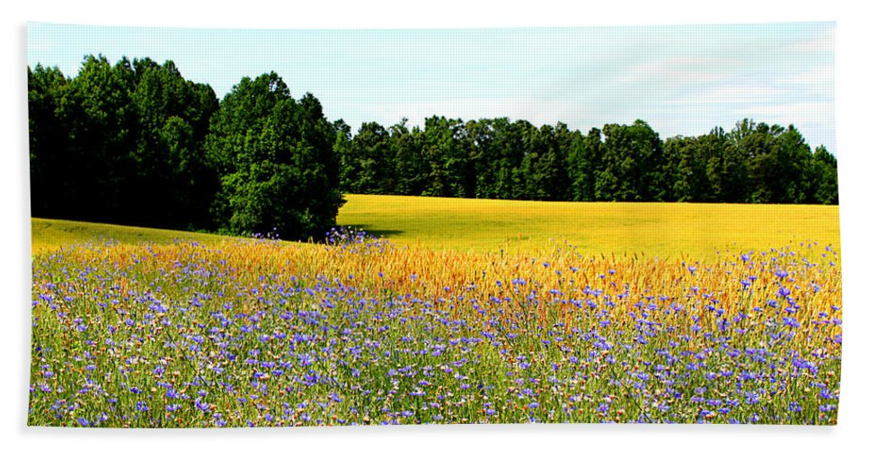 Gold Hand Towel featuring the photograph Golden Meadow by Tina Meador
