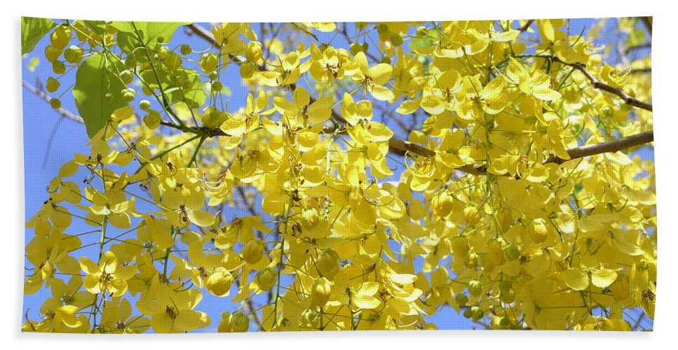 Yellow Hand Towel featuring the photograph Golden Medallion Shower Tree by Mary Deal