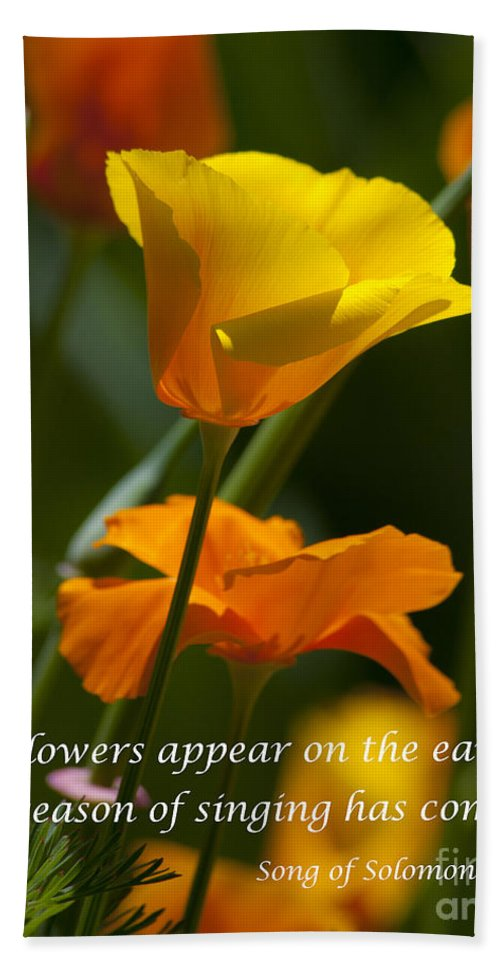 Golden Poppy Flower Photographs Hand Towel featuring the photograph Golden Poppy Floral Bible Verse Photography by Jerry Cowart