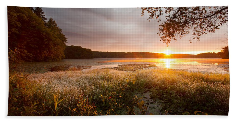 Sunrise Hand Towel featuring the photograph Golden Sunrise by Jonathan Steele