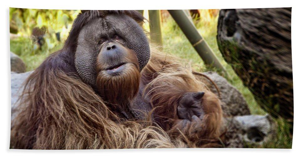 Monkey Bath Sheet featuring the photograph Good Day Mate by Jon Berghoff