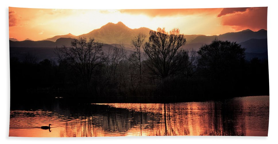 Sunsets Hand Towel featuring the photograph Goose On Golden Ponds 1 by James BO Insogna
