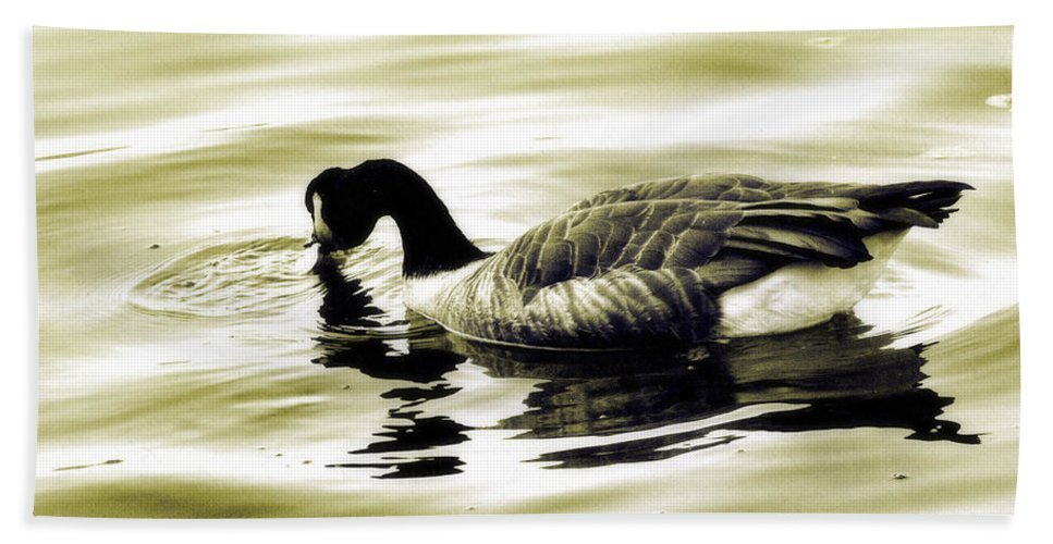 Goose Bath Sheet featuring the photograph Goose Reflecting In The Water by Alice Gipson