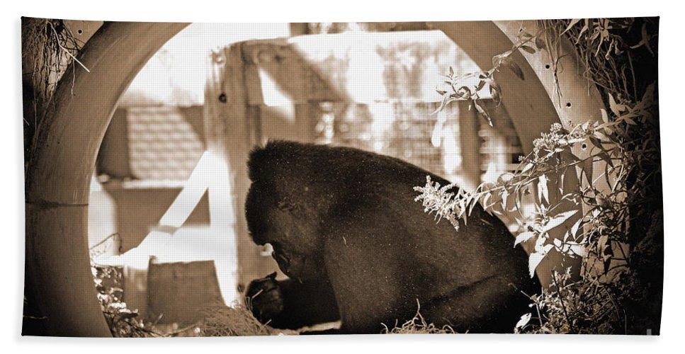 Monkey Bath Sheet featuring the photograph Gorilla by Karen Adams