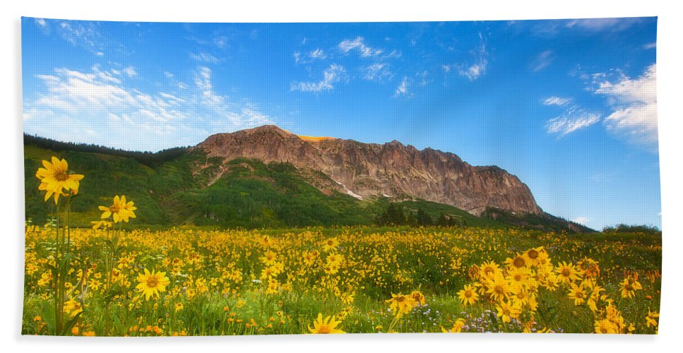 Colorado Landscapes Bath Sheet featuring the photograph Gothic Meadow by Darren White
