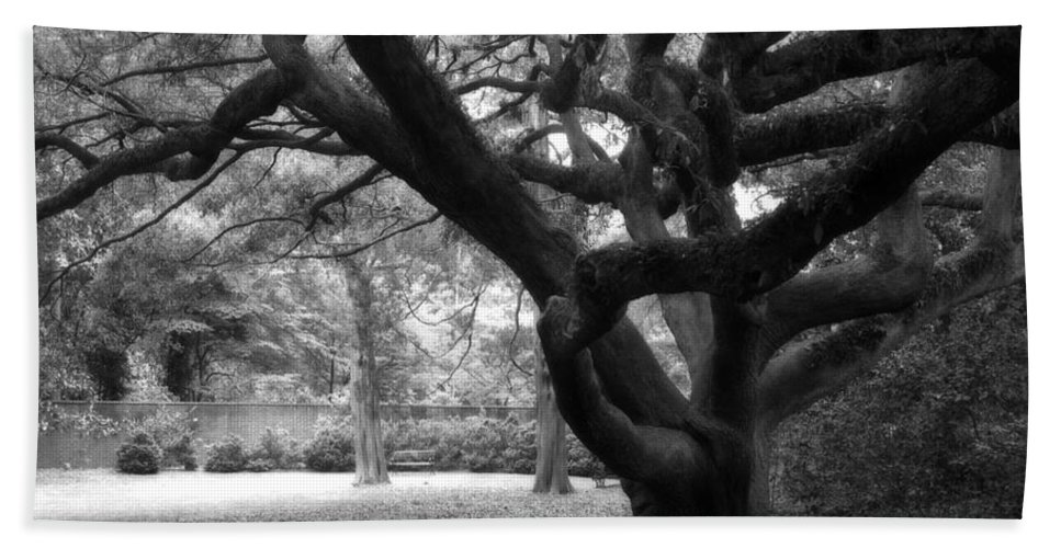 Angel Oak Trees Hand Towel featuring the photograph Gothic Surreal Black And White South Carolina Angel Oak Trees Park Landscape by Kathy Fornal