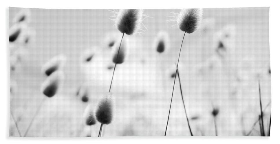 South Australia Bath Sheet featuring the photograph Grass Field Black And White by Tim Hester
