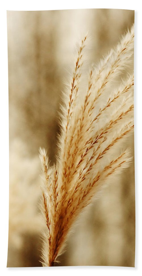 Grass Hand Towel featuring the photograph Grass by Roman Aj