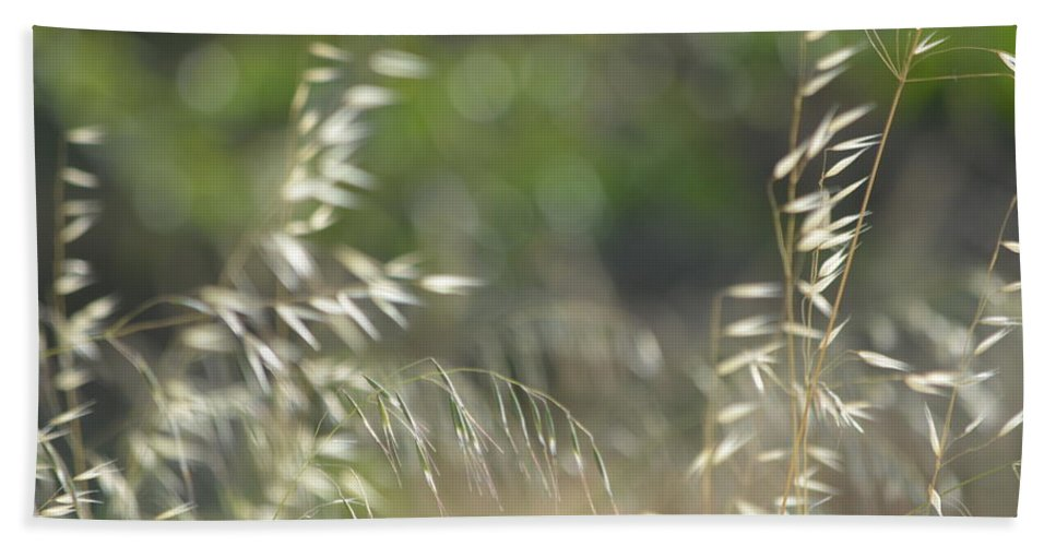 Bath Sheet featuring the photograph Grassland by Beth Sanders