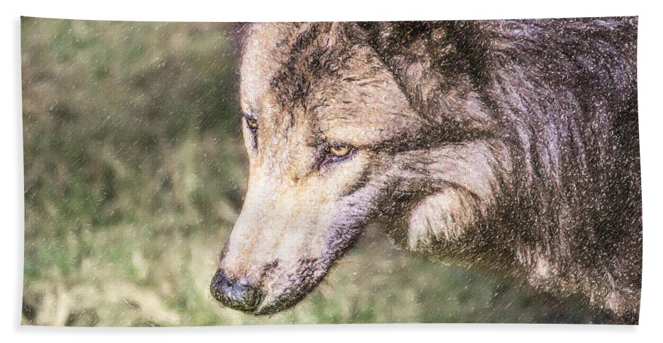 Gray Wolf Hand Towel featuring the digital art Gray Wolf Grey Wolf Canis Lupus by Liz Leyden