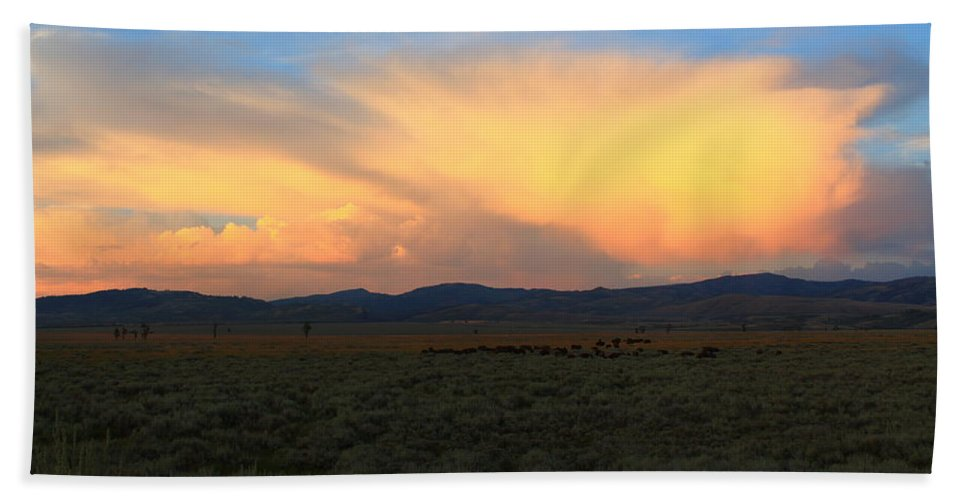Sunset Bath Sheet featuring the photograph Grazing Bison by Catie Canetti