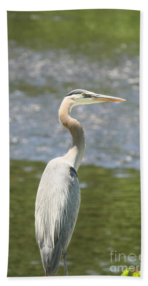Heron Bath Sheet featuring the photograph Great Blue Heron In Light by Neal Eslinger