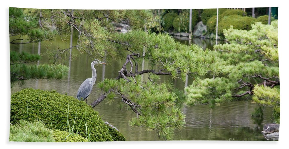 Blue Bath Sheet featuring the photograph Great Blue Heron In Pond Kyoto Japan by Thomas Marchessault