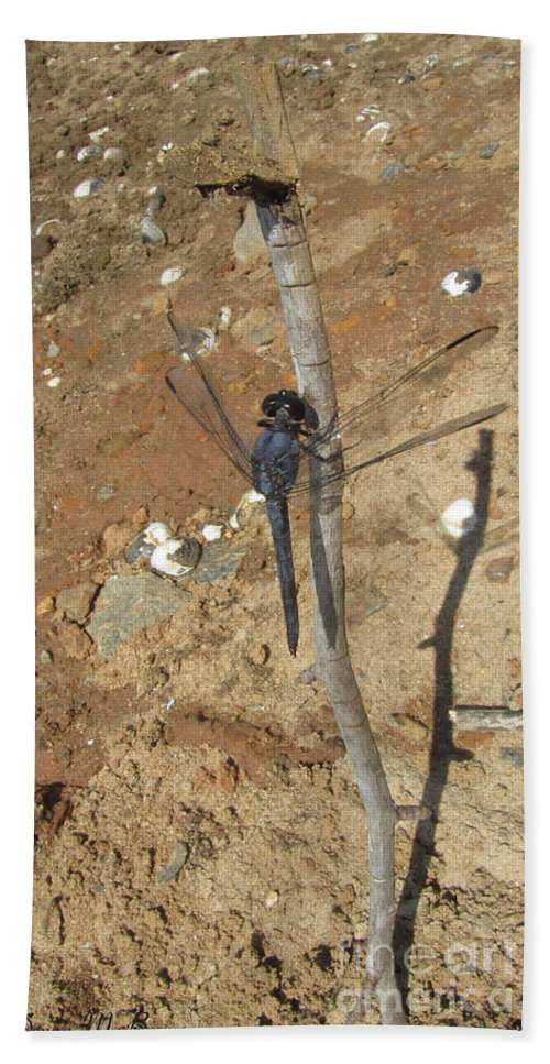 Insect Bath Sheet featuring the photograph Slaty Skimmer Dragonfly Shadow by Donna Brown