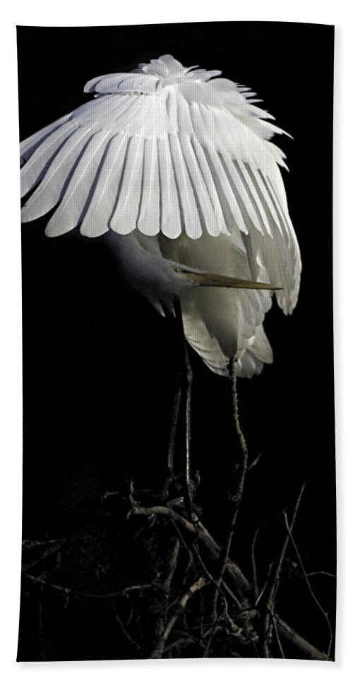 Egret Hand Towel featuring the photograph Great Egret Bowing by William Jobes