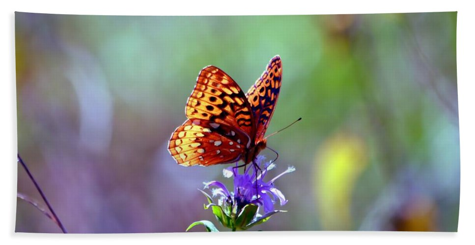 Butterfly Bath Sheet featuring the photograph Great Spangled Fritillary by Deena Stoddard