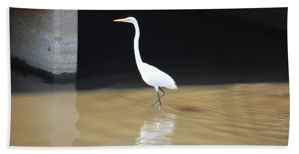 Fishing The Bridge Hand Towel featuring the photograph Great White Heron by Robert Floyd