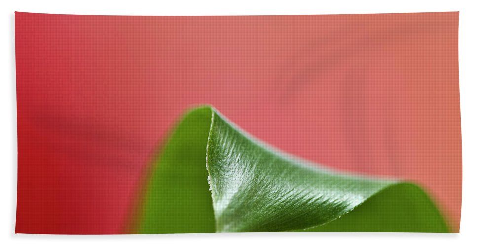 Heiko Hand Towel featuring the photograph Green And Red by Heiko Koehrer-Wagner