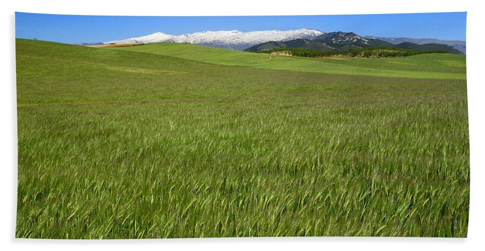 Mountains Hand Towel featuring the photograph Green And Snow by Guido Montanes Castillo
