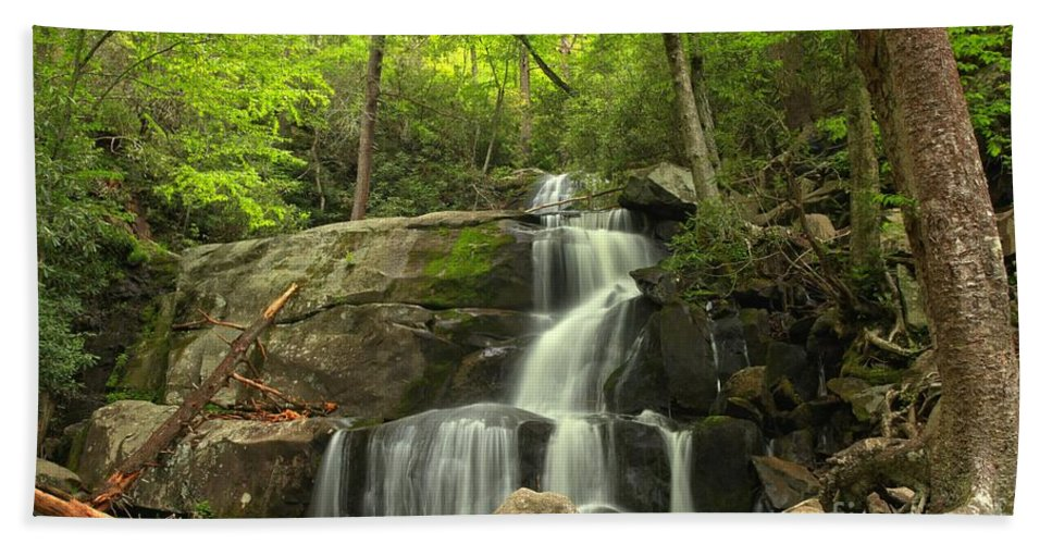 Laurel Falls Hand Towel featuring the photograph Green Canopy Above Laurel Falls by Adam Jewell