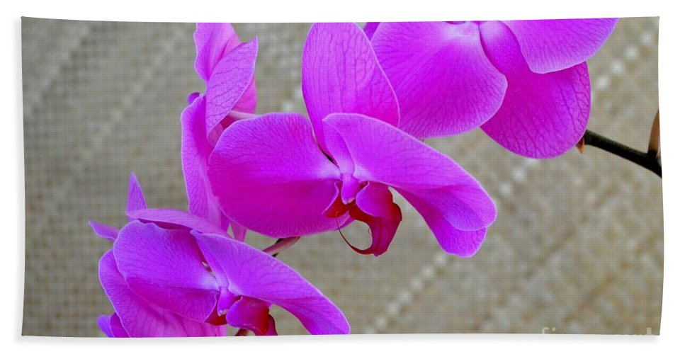 Orchid Bath Sheet featuring the photograph Green Field Sweetheart Orchid No 3 by Mary Deal