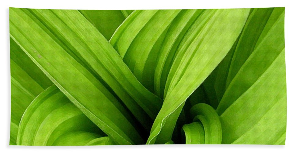 Plants Bath Sheet featuring the photograph Green Folds by Karol Livote