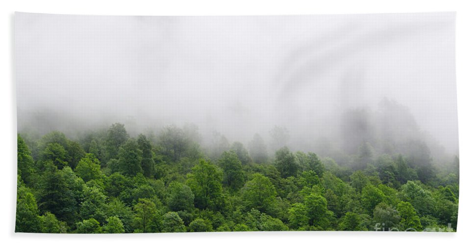 Trees Bath Sheet featuring the photograph Green Forest With Clouds by Mats Silvan