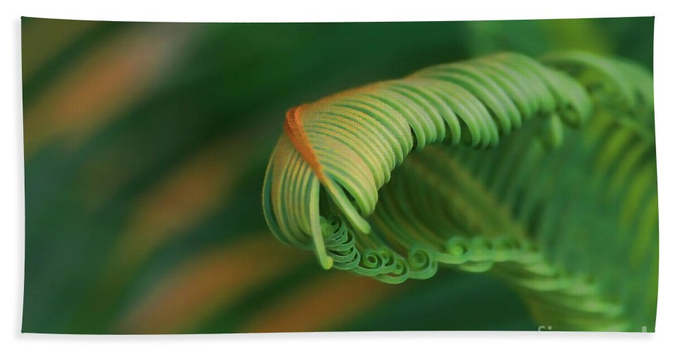 Abstract Hand Towel featuring the photograph Green Frond Abstract by Teresa Zieba