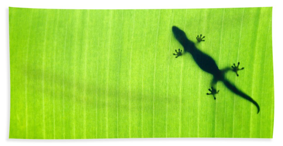 Green Hand Towel featuring the photograph Green Gecko Leaf by Sean Davey