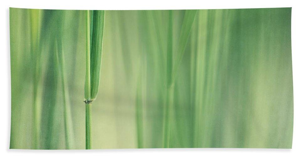 Grass Hand Towel featuring the photograph Green Grass by Priska Wettstein