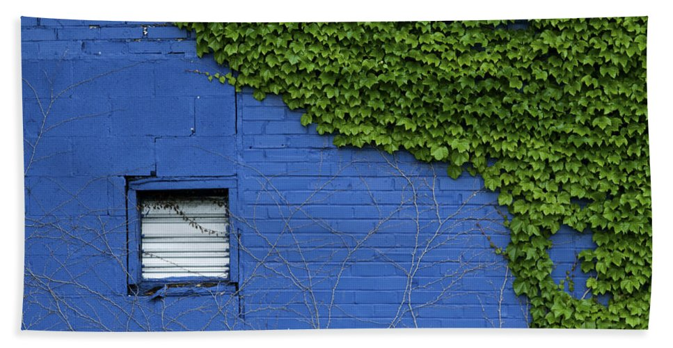 Green Hand Towel featuring the photograph green on blue IMG 0964 by Greg Kluempers
