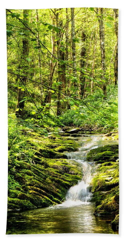 Forest Pond Bath Sheet featuring the photograph Green River No2 by Weston Westmoreland