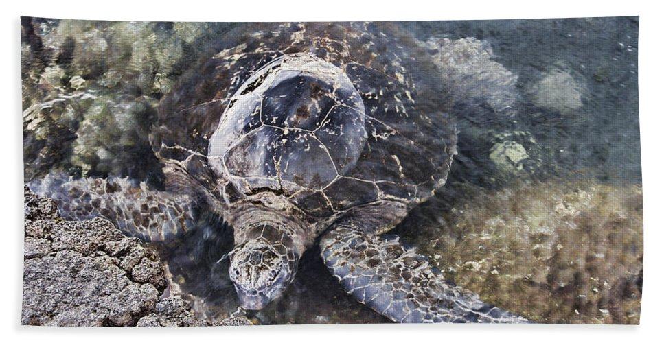 Green Sea Turtle Bath Sheet featuring the photograph Green Sea Turtle Hawaii by Douglas Barnard