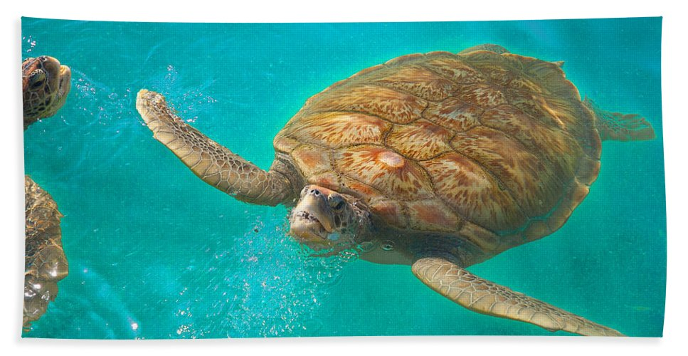 Sea Turtle Hand Towel featuring the photograph Green Sea Turtle Surfacing by Marie Hicks
