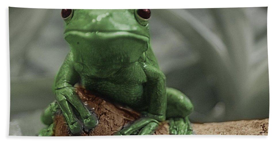 Green Bath Sheet featuring the photograph Greeny 4 by Ben Yassa