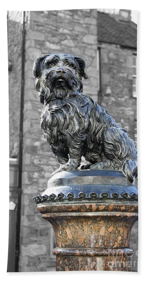 Greyfriars.greyfriar's Hand Towel featuring the photograph Greyfriars Bobby by Diane Macdonald