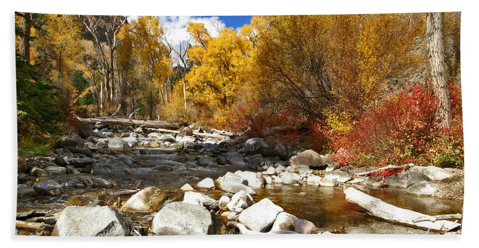 Grizzly Creek Canyon Hand Towel featuring the photograph Grizzly Creek Canyon by Jeremy Rhoades