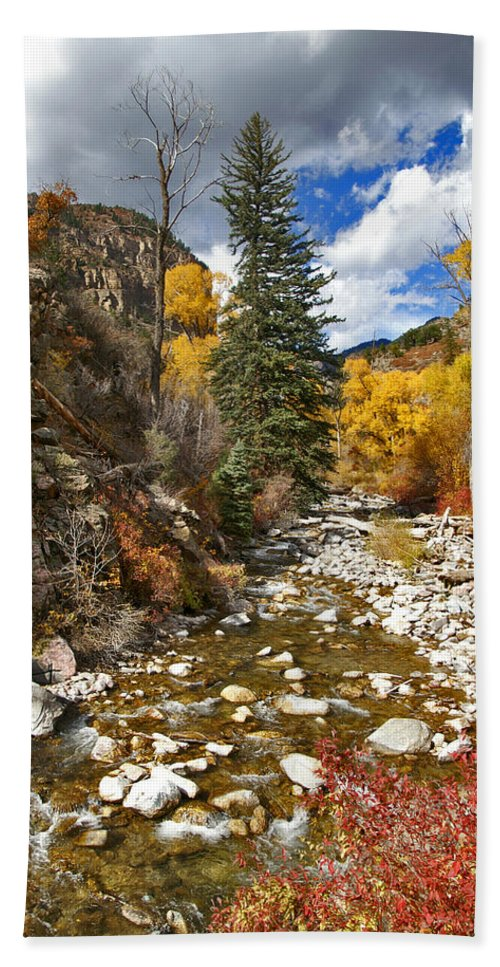 Grizzly Creek Hand Towel featuring the photograph Grizzly Creek Cottonwoods Vertical by Jeremy Rhoades