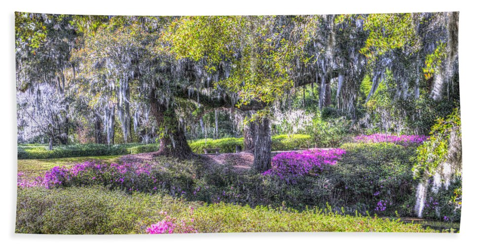 Azalea Bath Towel featuring the photograph Grounds Of Middleton by Dale Powell