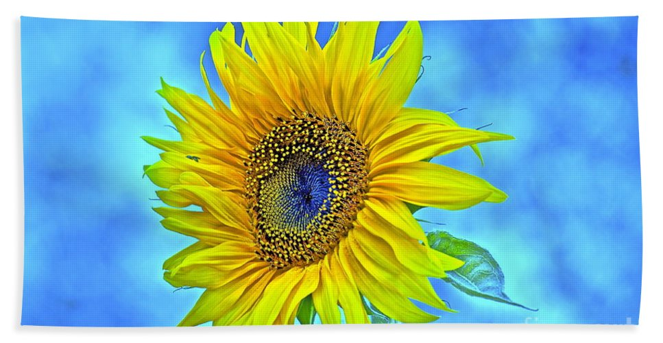 Sunflower Hand Towel featuring the photograph Growth Renewal And Transformation by Gwyn Newcombe