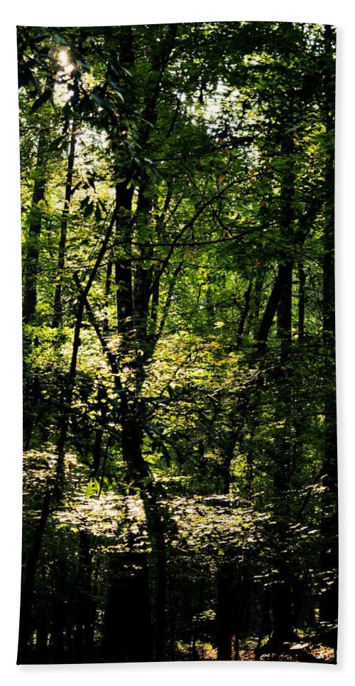 Guardians Of The Forest Hand Towel featuring the photograph Guardians Of The Forest by Maria Urso