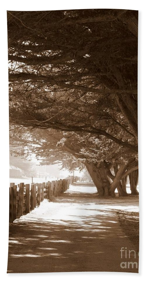 Sepia Hand Towel featuring the photograph Half Moon Bay Pathway by Carol Groenen