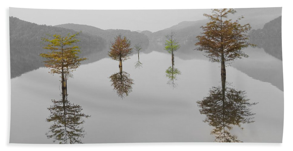 Appalachia Bath Towel featuring the photograph Hanging Garden by Debra and Dave Vanderlaan